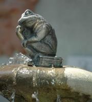Bronze -  Frosch -  - Höhe 10 cm - Preis: 55 €