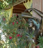 Akt Bonzeakt Gartenblumen Gartentopf