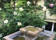 Brunnen Henry Wasserspiel Springbrunnen