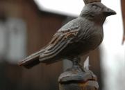 Vogelkönig Rankstab Rankhilfe
