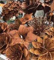 Rostblume in vielen größen bei uns erhältlich :-)
