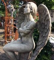 Engel ELOA