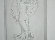 Relief - Venus